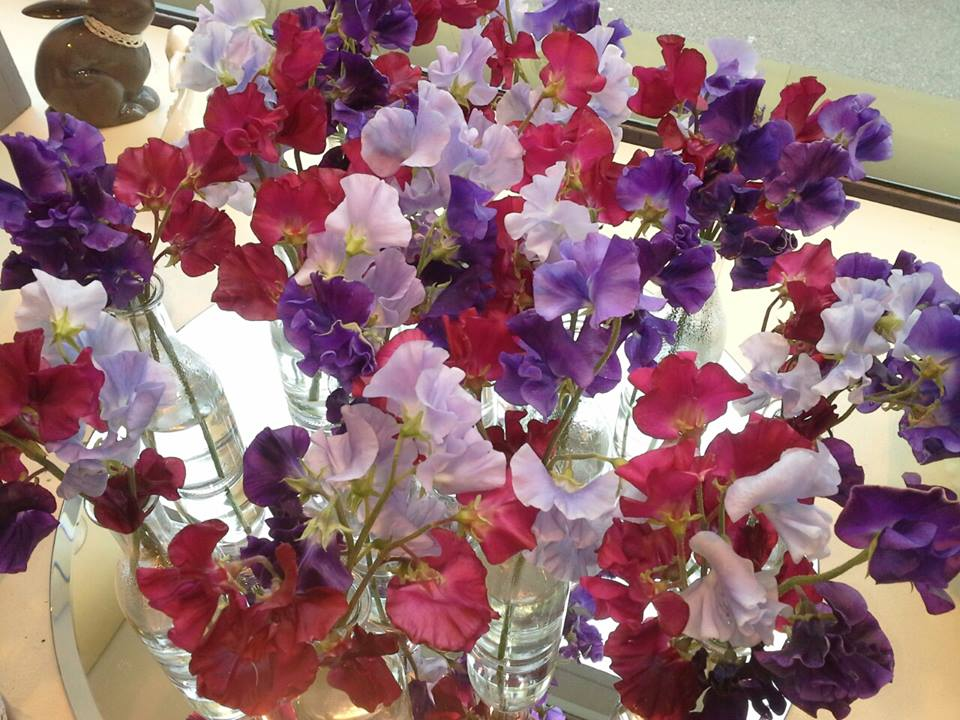 Blumen Für Taufe Erstkommunion Floristik Modern