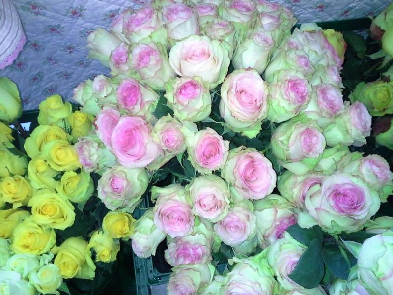 Floristik Modern Sigrid Weil Blumen Für Jeden Anlass